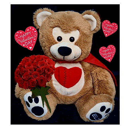Bear Video Image